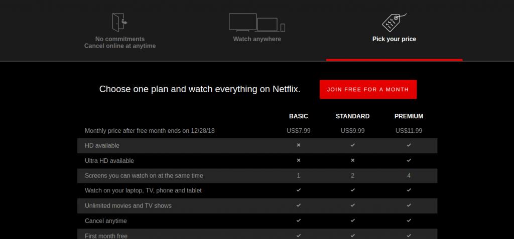 Choose Netflix Subscription