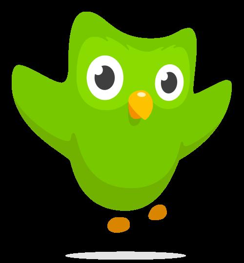 Duolingo - Educational Apps for Chromebook