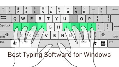 Best Typing Software for Windows
