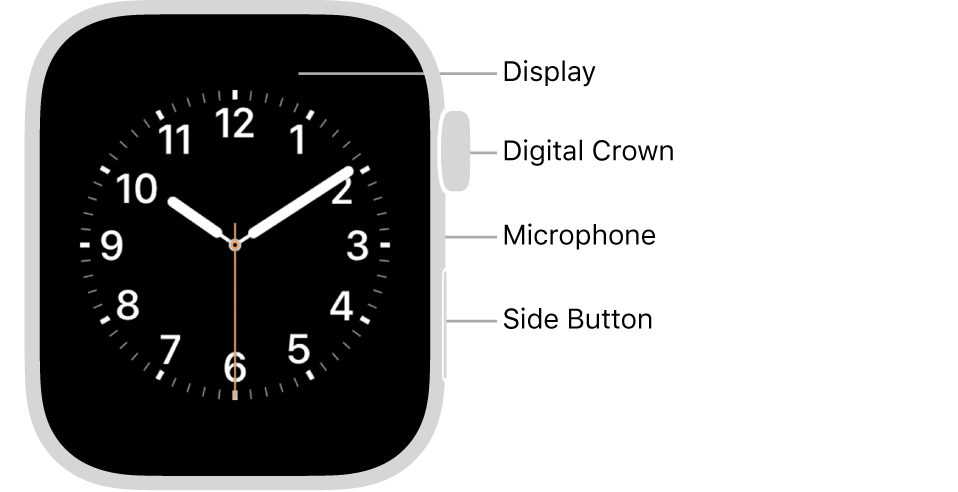 How to Use Apple Watch?