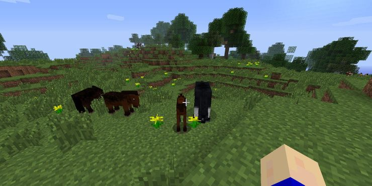 How to breed horses on minecraft