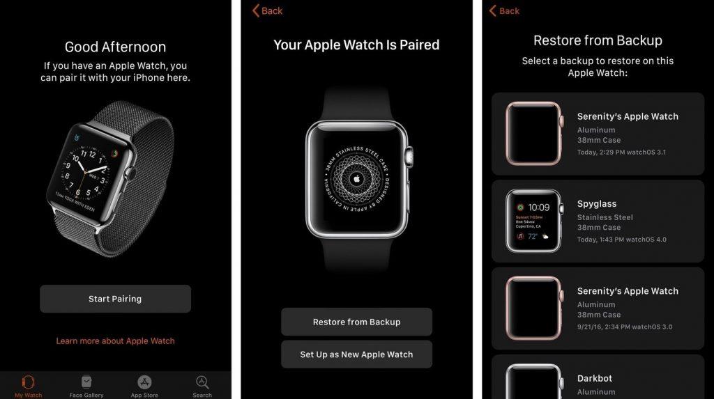Backup Apple Watch