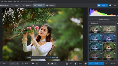 Best Free Photo Editing Software for Windows 10