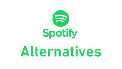 Best Spotify Alternatives