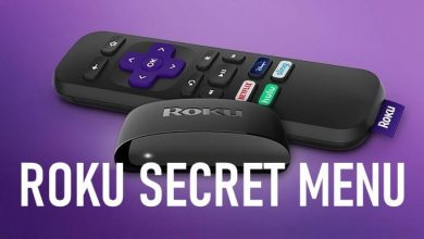 Roku secret menu