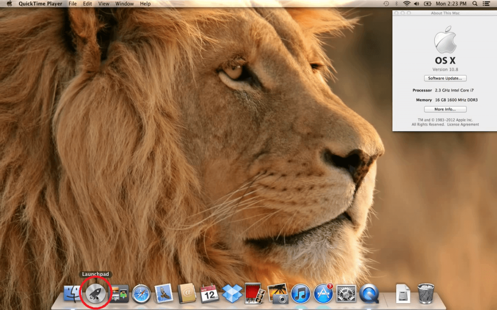 Task Manager on Mac