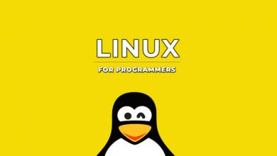 best linux distro for developers and programmers