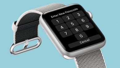Forgot Apple Watch Passcode