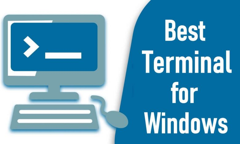 Best Terminal for Windows